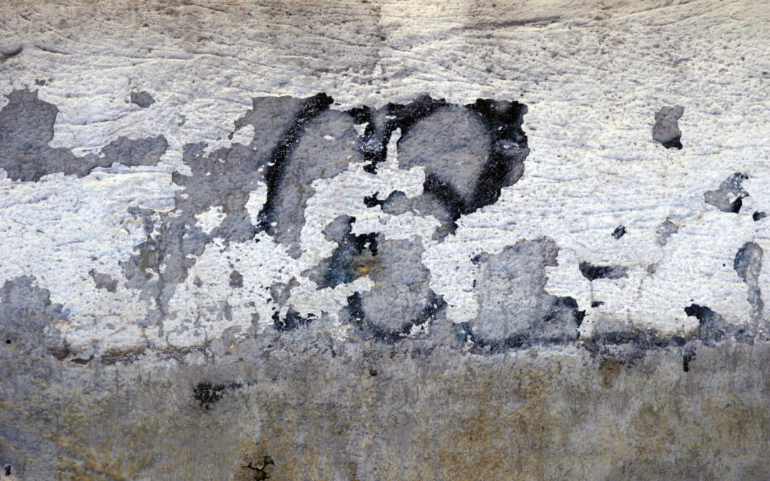 Mold In Your Home Is Serious – Lake Forest Plumbers
