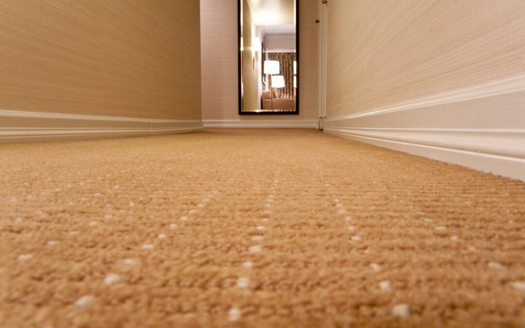 Carpet Mold Is No Fun – Lake Forest Plumbing