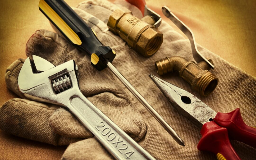 To Hire or Not To Hire A Professional Lake Forest Plumber?